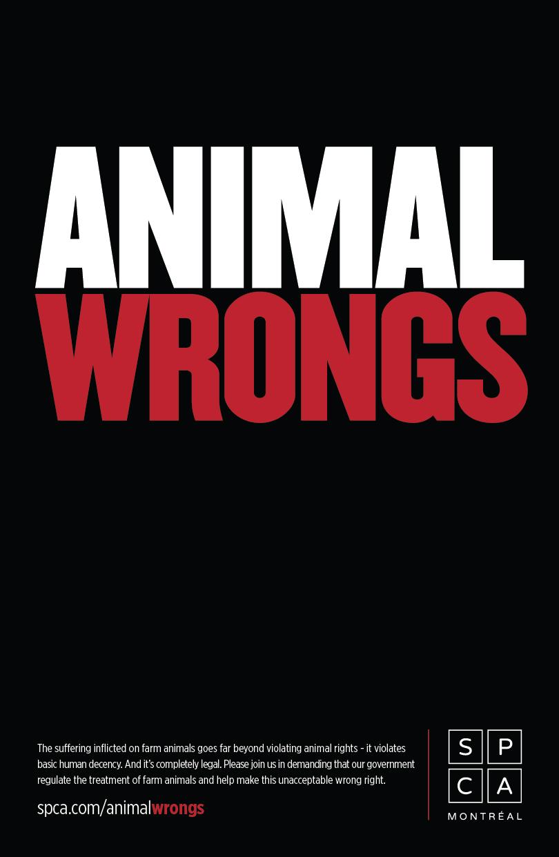 animal_poster_1