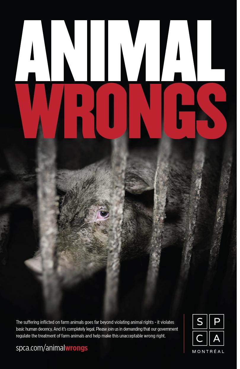 animal_poster_2