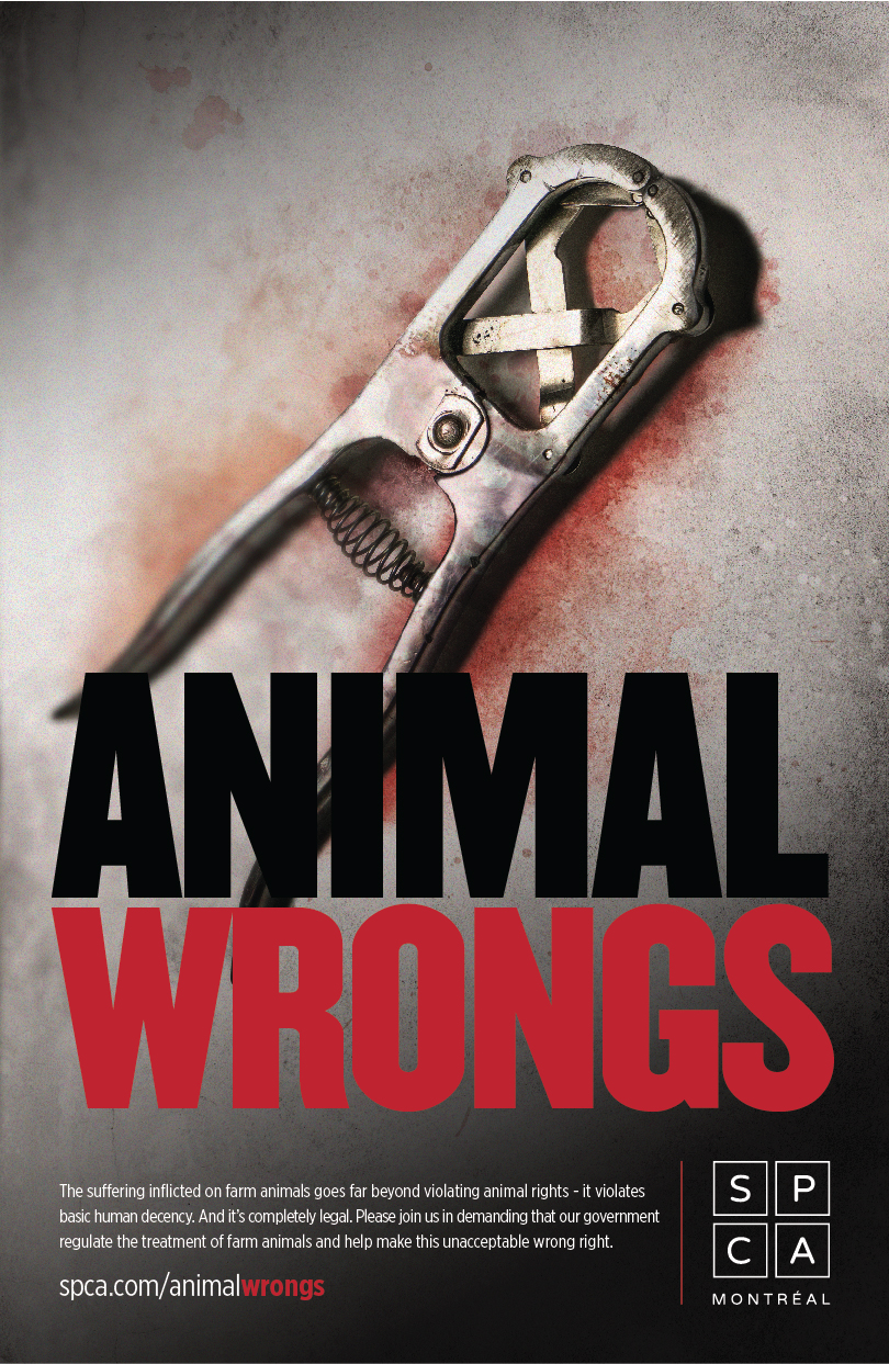 animal_poster_3